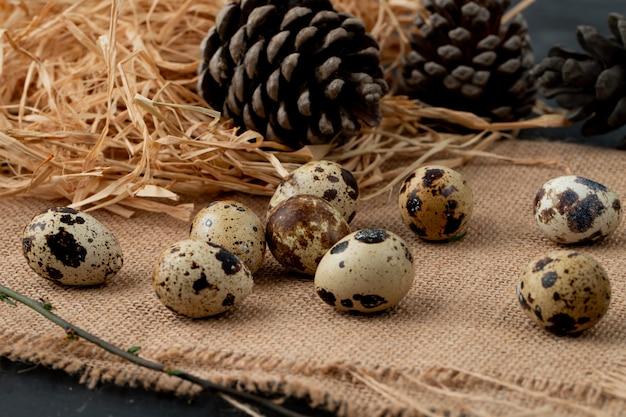 Nahaufnahme von mini-eiern mit stroh und tannenzapfen auf sackleinenoberfläche