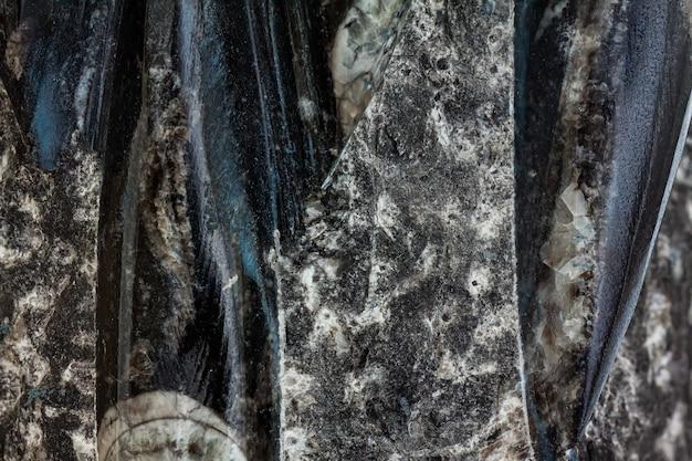 Nahaufnahme von orthoceras fossil