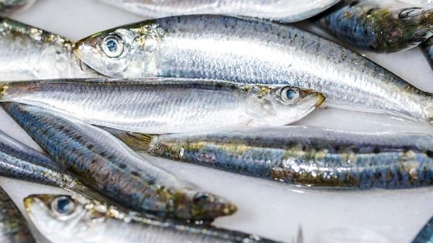 Nahaufnahme von weißen frischen fischen