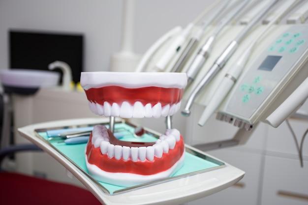 Nahaufnahme von zahnarztwerkzeugen und künstlichen kiefern in der modernen zahnklinik
