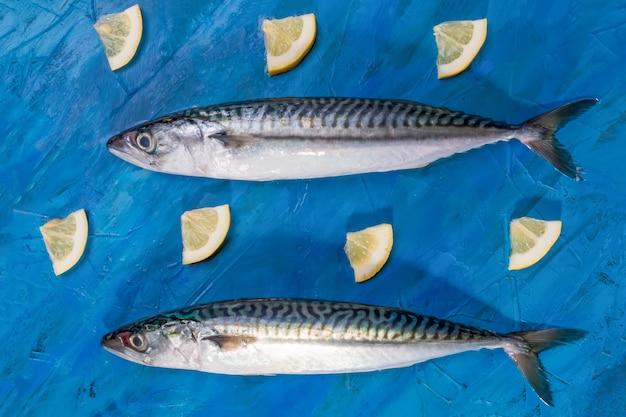 Nahaufnahme von zwei rohen frischen gesunden makrelenfischen, draufsicht