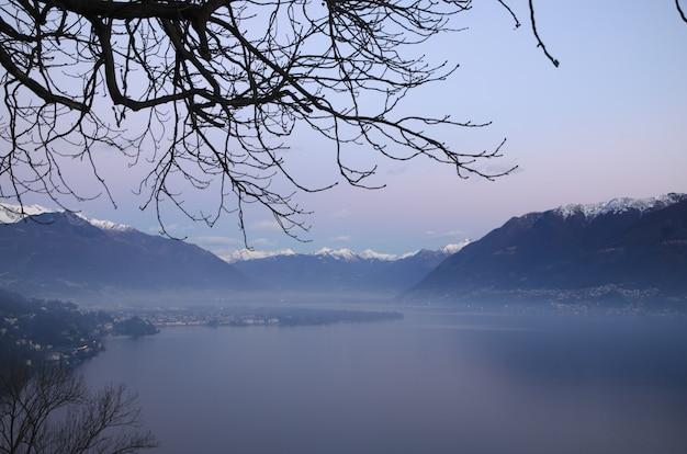Nahaufnahme von zweigen gegen eine dunstige atemberaubende szene in den alpen