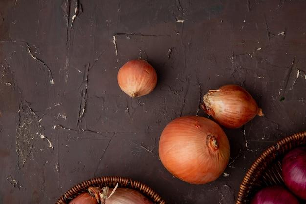 Nahaufnahme von zwiebeln auf kastanienbraunem hintergrund mit kopienraum