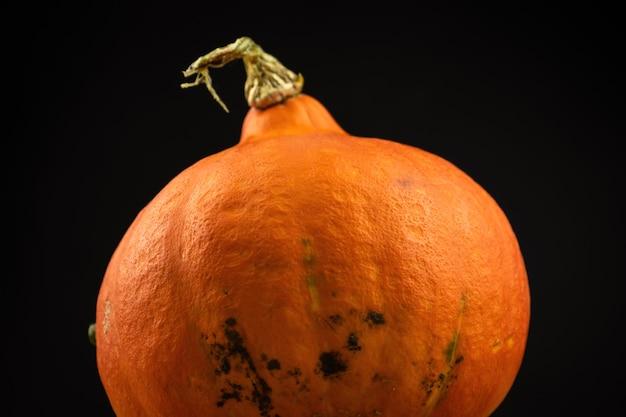 Nahaufnahme zu hokkaido-kürbis oder red kuri auf schwarzem hintergrund. frisches gemüselebensmittelkonzeptfoto des herbstes