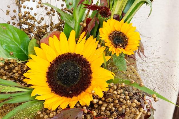 Nahaufnahmeaufnahme der schönen sonnenblumen mit gelben blütenblättern