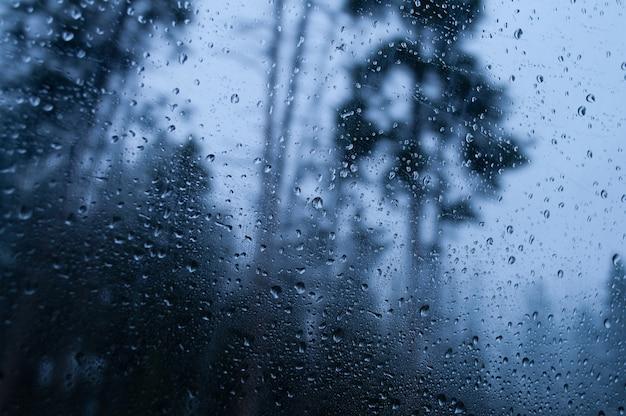 Nahaufnahmeaufnahme eines nassen glases, das die regnerische waldlandschaft reflektiert