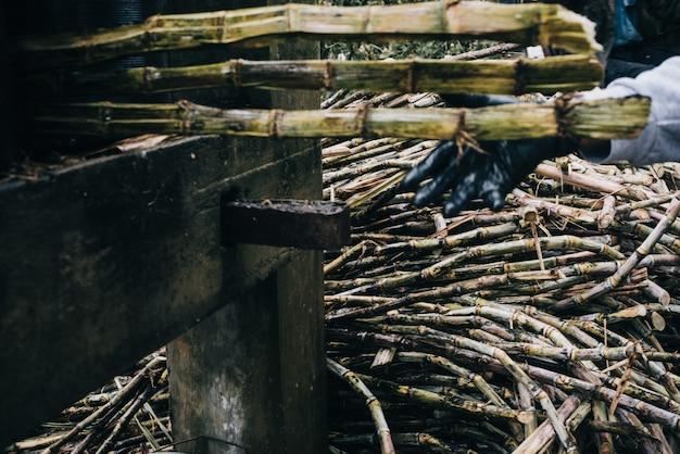 Nahaufnahmeaufnahme eines stapels von getrockneten zuckerrohren in einem landwirtschaftlichen feld