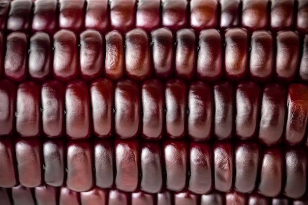 Nahaufnahmebeschaffenheit des purpurroten maissamens. konzepte für gesundes essen.