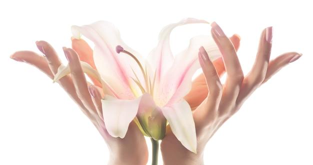 Nahaufnahmebild der hände der anmutigen frau, die eine knospe der orchideenblume hält.