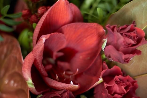 Nahaufnahmeblumenladenfenster mit exotischen blumen, selektiver fokus