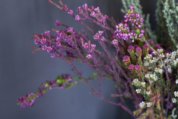 Nahaufnahmeblumenladenfenster mit exotischen blumen