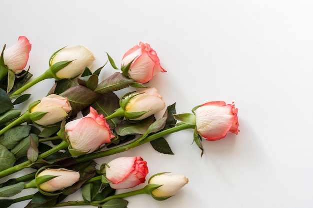 Nahaufnahmebündel romantische rosen