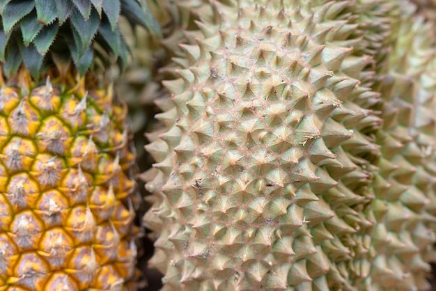 Nahaufnahmedornen von durian und von ananas an einem straßenmarkt in thailändischem thailand