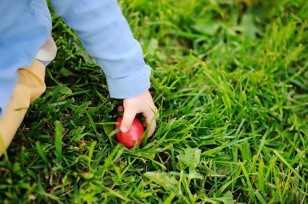 Nahaufnahmefoto des kleinen jungen im frühjahr jagend für park ostereies an ostertag