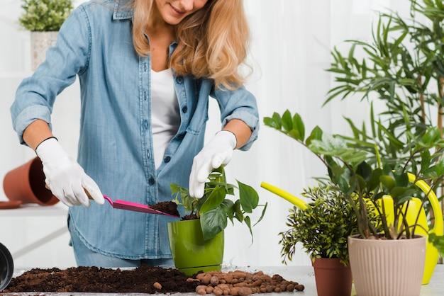 Nahaufnahmefrau, die blume pflanzt