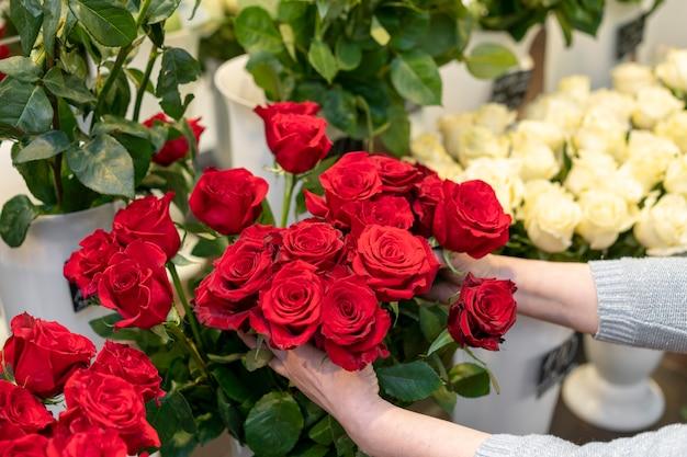 Nahaufnahmefrau, die elegante rote rosen hält