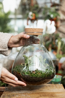Nahaufnahmefrau, die glas mit pflanzen hält