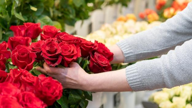 Nahaufnahmefrau, die sammlung der roten rosen hält