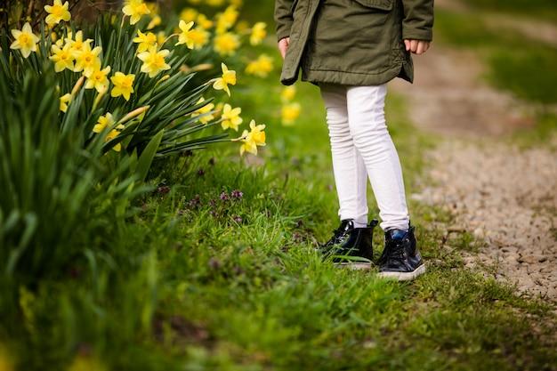 Nahaufnahmefüße des landes des kleinen mädchens im frühjahr auf dem grünen gras mit gelben narzissen