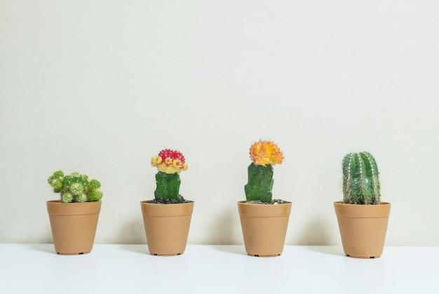 Nahaufnahmegruppe des kaktus im braunen topf für verzieren auf schreibtisch