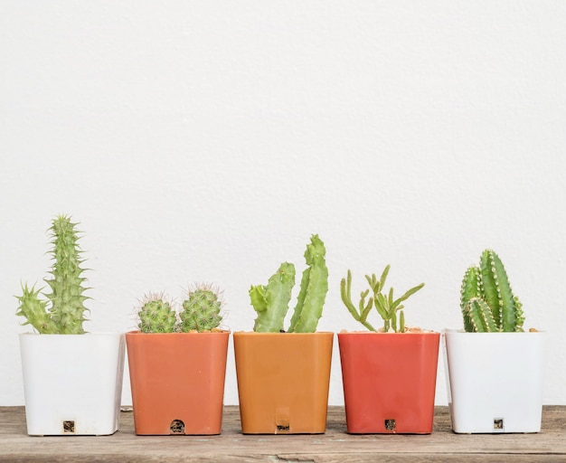 Nahaufnahmegruppe des kaktus im weißen und braunen plastiktopf auf unscharfem hölzernem schreibtisch und weißzementwand