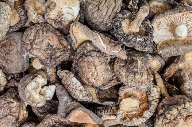 Nahaufnahmegruppe getrockneter pilzhintergrund