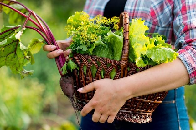 Nahaufnahmehand, die salatkorb hält