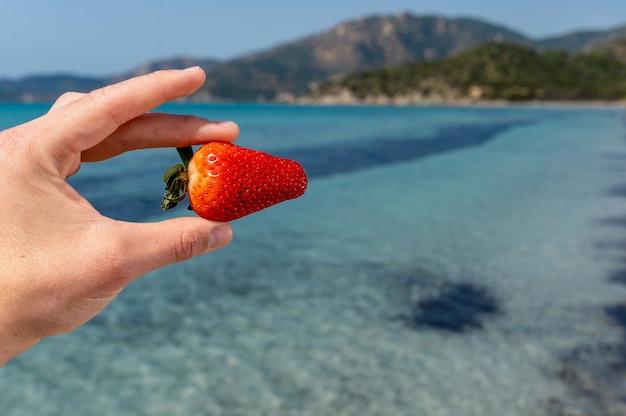 Nahaufnahmehand, die zwischen den fingern eine reife erdbeere mit schönem idyllischem durchscheinendem meerwasser hält