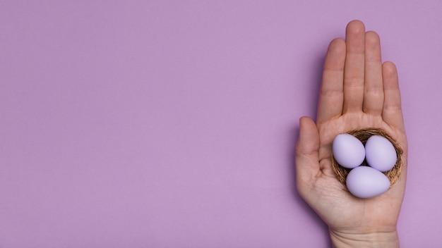 Nahaufnahmemann, der purpurrote eier hält