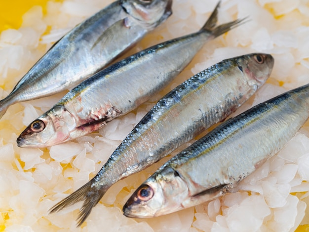 Nahaufnahmepaare von makrelen auf eis