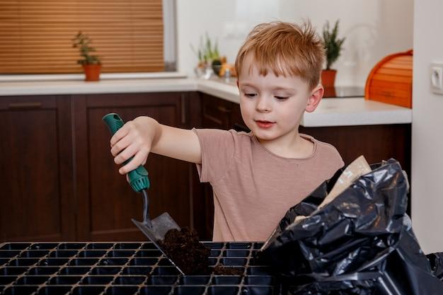Nahaufnahmeporträt einer kindergartenarbeit. hausgartenarbeit.