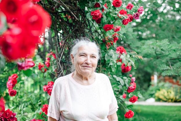 Nahaufnahmeporträt einer lächelnden älteren frau in einem garten stolz auf einen schönen bogen der roten rosen