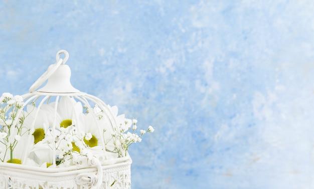 Nahaufnahmevogelkäfig mit weißen gänseblümchen