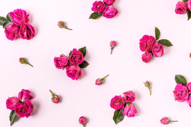 Nahaufnahmezusammenstellung von rosafarbenen blumenblättern