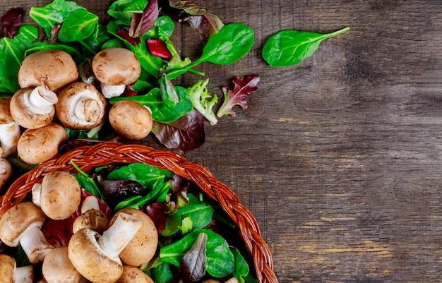 Nahrhafter eignungssalat der grünen frischen salatchampignons rucola.