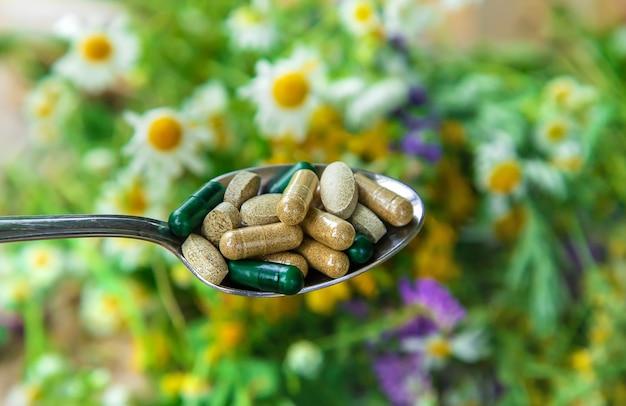 Nahrungsergänzungsmittel und vitamine mit heilkräutern. selektiver fokus. natur.