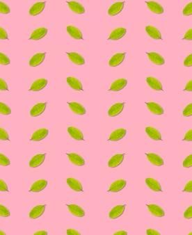 Nahtlos von der grünen farbe des blattes auf rosa hintergrund, blätter
