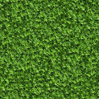 Nahtlose kippbare textur von green bush