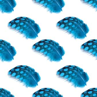 Nahtlose muster blaue schöne federn isoliert auf weißem hintergrund. foto in hoher qualität