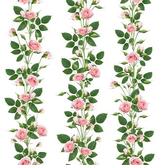 Nahtloses blumenmuster der zweige, die rosa rosenblüten mit blättern und knospen klettern, lokalisiert auf weißer wand