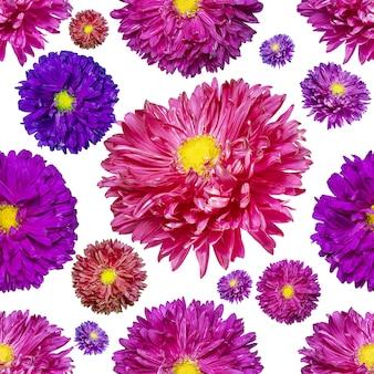 Nahtloses endloses muster mit mehrfarbigen asterblumen. blumenhintergrund. für gestaltung und druck. natürliche astern-hintergrund. konzept für druck und design.