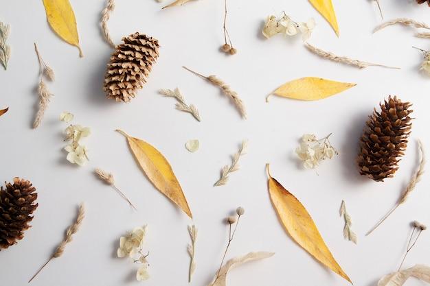 Nahtloses muster aus gelben blättern, zapfen und trockenen pflanzen.