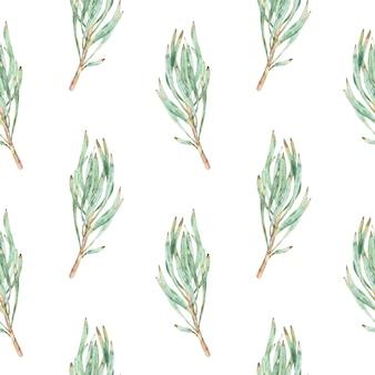 Nahtloses muster des aquarells von grünen proteablättern.