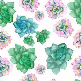 Nahtloses muster mit echeveria succulent