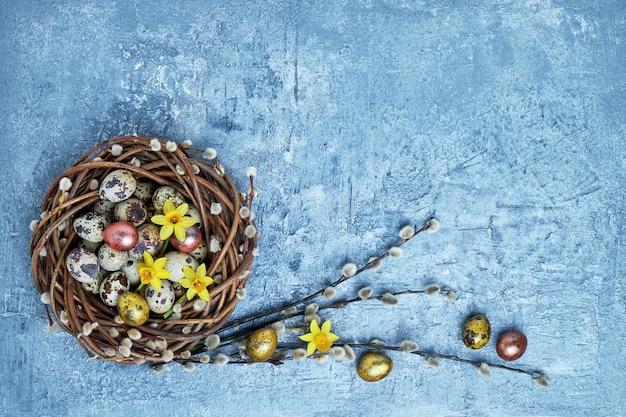 Narzisse, osterweidenkranz und wachtel-ostereier auf blau. draufsicht, kopierraum
