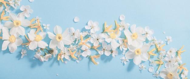 Narzissen und kirschblumen auf blauem hintergrundhintergrund