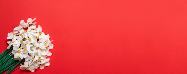 Narzissenblumenstrauß auf rotem hintergrund mit platz für text.