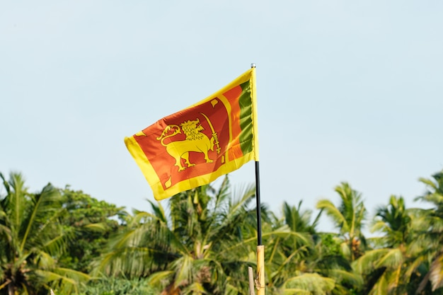 Nationalflagge von sri lanka im wind