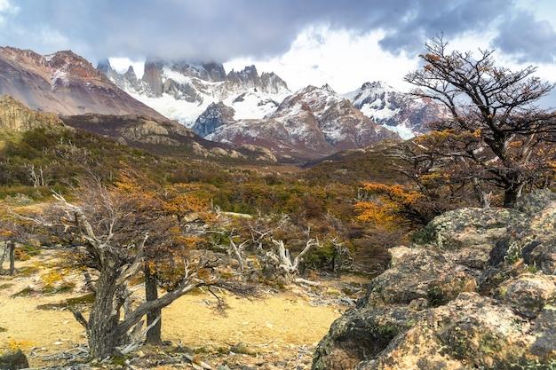 Nationalpark los glaciares, provinz santa cruz, patagonien, argentinien