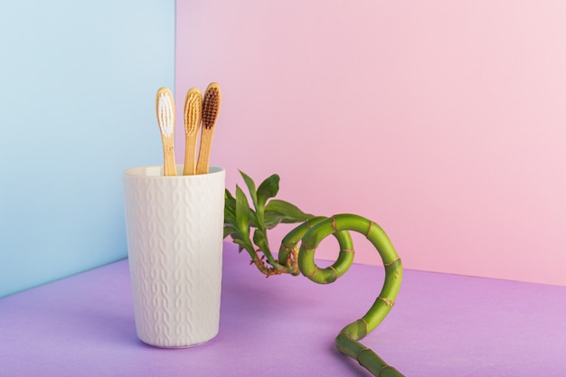 Natürliche bambuszahnbürsten aus glas mit bambuspflanze auf rosafarbenem hintergrund. biologisch abbaubare natürliche bambuszahnbürste. umweltfreundlich zero waste zahnpflege, plastikfreies konzept. platz für text kopieren